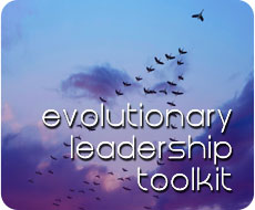 Evolutionary Leadership Toolkit